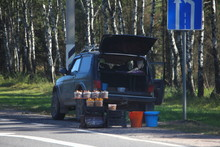 Buckets With Mushrooms Near Th...