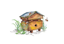 Illustration Of Colorful Realistic Wooden Bee Hive Apiary In Garden Grass With Bees. Fragment Of Bees' Life. Watercolor Hand Painted Isolated Elements On White Background.