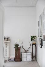 Living Room Interior In Luxury...