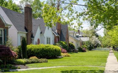 Older established residential neighborhood of homes.