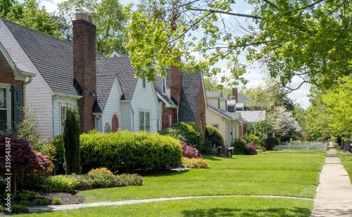Cuadros en Lienzo Older established residential neighborhood of homes.