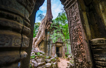 Entrance To The World Famous Heritage In Angkor Wat - Ta Prohm