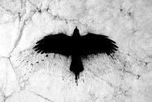 Silhouette Of A Flying Raven With Spread Wings With Paint Splashes, Splatters And Blots On An Old Grunge Vintage Paper Texture Background.