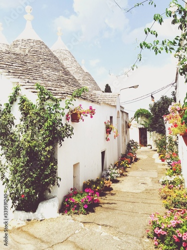Photo Flowers On Street By Trulli Houses Against Sky At Alberobello