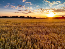 Beautiful Sunset And Field Of ...