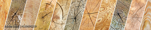 Obraz Collection varied wooden textures separated oblique lines. - fototapety do salonu
