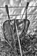 Wheelbarrow And Gardening Fork In Yard