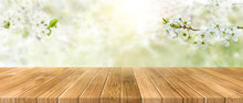 Spring Background With White B...
