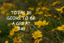 Inspirational Quotes - Today Is Going To Be A Great Day.