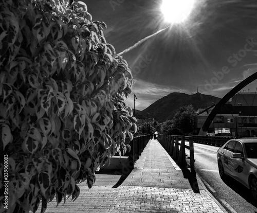 Photo Narrow Footbridge Against The Sky
