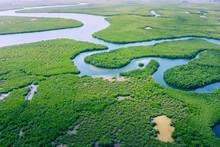Aerial View Of Amazon Rainfore...