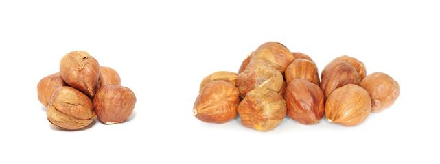 hazelnuts isolated on white background
