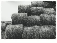 Hay Bales Stack At Farm Field