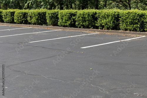 Fotografija Empty lined asphalt parking lot bordered by bushes and trees, horizontal aspect
