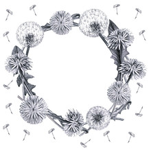 Dandelion Wreath On A White Ba...