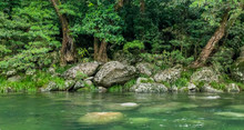 View Of Mossman Gorge River, Queensland, Australia. Part Of Daintree Rainforest National Park, Magical Place With Crystal Water.