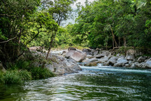 View Of Mossman Gorge River, Q...