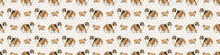 Hand Drawn Cute Rough Collie Dog And Puppy Breed Seamless Border Pattern. Purebred Pedigree Domestic Dog Background. Dog Lover Fluffy Pet Washi Ribbon. Kennel Pooch EPS 10.