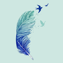 Vector Blue Feather And Birds ...