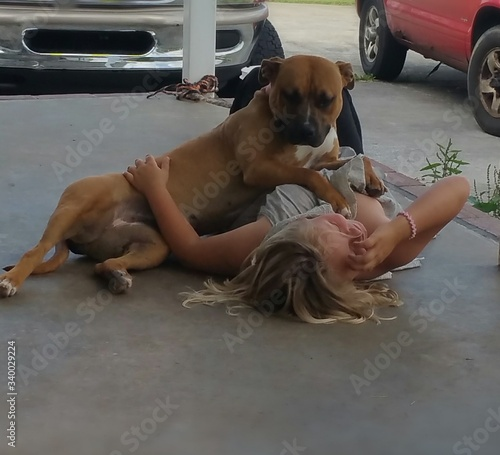 Foto Close-up Of Playful Pit Bull Terrier With Woman On Sidewalk