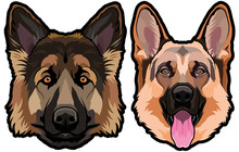 German Shepherd Dog Portrait Colored Vector Illustration
