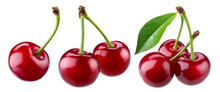 Cherry Isolated. Sour Cherry. ...
