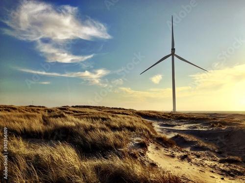 Wind Turbines On Beach - fototapety na wymiar