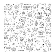 Cute Doodle Forest Animals. Ca...