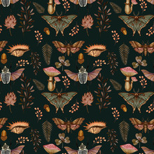 Pattern Of Insects And Plants