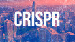 Crispr theme with abstract network patterns and downtown San Francisco skyscrapers