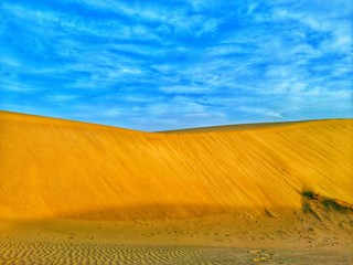 Sand dunes in desert of Algeria
