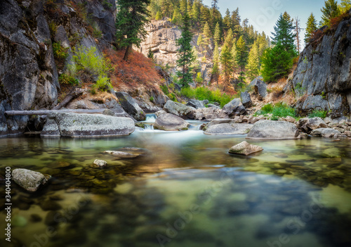 View Of Middle Fork Payette River In Forest - fototapety na wymiar