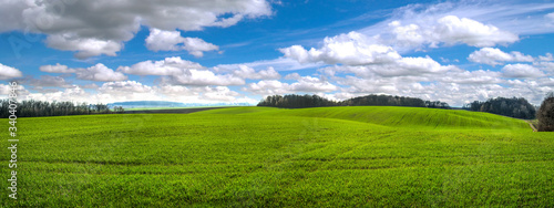 Fotografía panoramic view fields winter wheat at hilly terrain in spring with cloudy sky