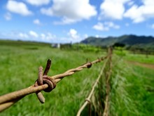 Rusty Barbed Wire Fence On Grassy Field Against Sky