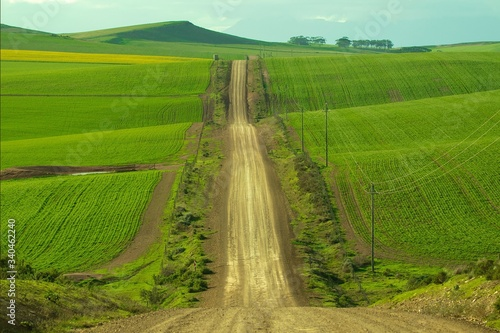 Photo Empty Dirt Road Amidst Agricultural Fields