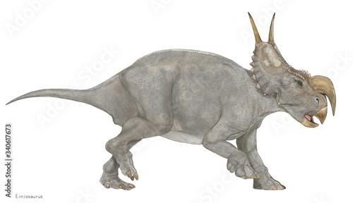 Photo エイニオサウルス 白亜紀の恐竜 角竜類 トリケラトプスやカスモサウルス類よりも原始的なセントロサウルスの仲間である。鼻先の角が大きく下にねじ曲がったような一本の