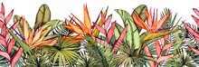 Seamless Border With Tropical Palm Leaves, Exotic Heliconia And Strelitzia Flowers.