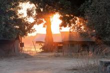 Sunrise On Tent In Safari Camp