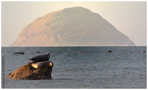 Photo Scenic View Of Ailsa Craig Island