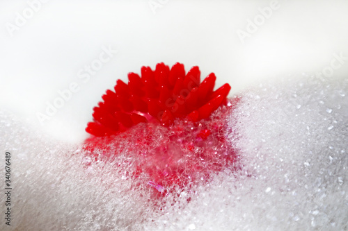 Fotografie, Tablou Coronavirus in a soap suds