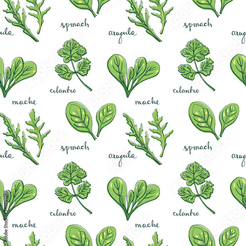 Fototapeta Seamless pattern with herbs and salad leaves and flowers: spinach, arugula, mache, coriander/ Hand drawn colorful background/ Vector illustration obraz
