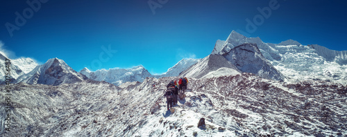 Mountaineers make climbing Mount Island Peak Imja Tse , 6,189 m, Nepal Billede på lærred