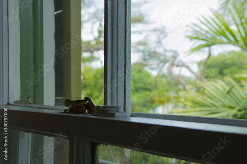 Photo Detalle de una ventana de la casa de Ernest Hemingway