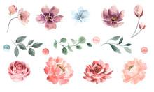 Big Set Of Watercolor Flowers ...