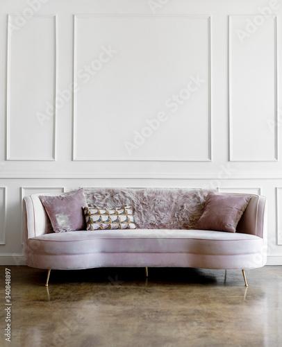 Light pink velvet sofa Slika na platnu