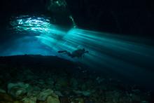 Scuba Diving In The Yucatan Cenote