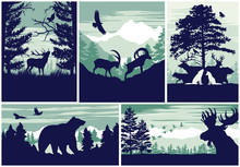 Mountain And Forest Animal Wil...