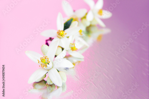 Photo natural white flowers of the fruit are orange with a yellow stamens and pistil