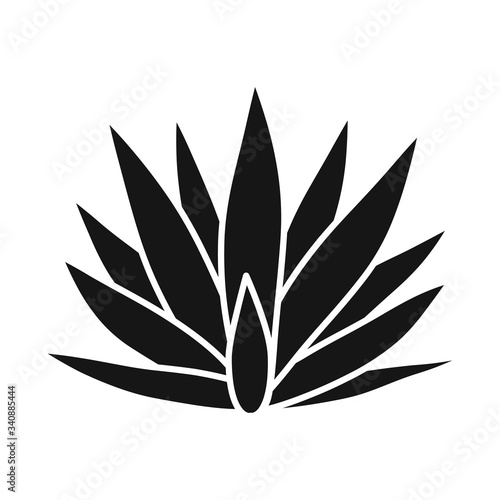 Isolated object of agave and tequila logo Canvas Print