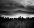 Leinwandbild Motiv Silhouette Trees On Landscape Against Sky